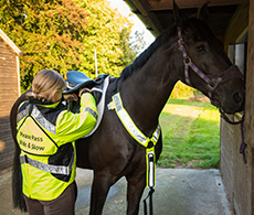 Hi-viz horse riding equipment review