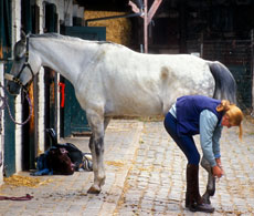 How to Poultice a Foot